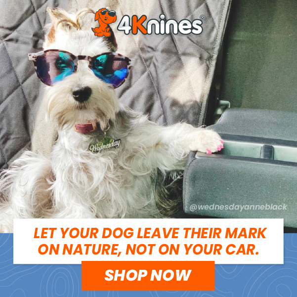 Car Seat Covers For Dogs & Best Car and Truck Seat Covers