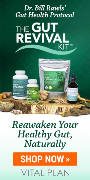 Vital Plan Gut Revival Kit