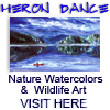 Nature Art & Wildlife Watercolors