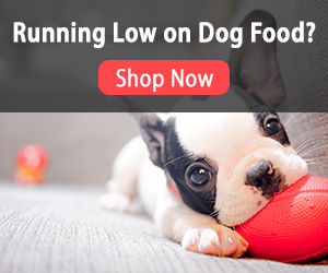 Running Low on Dog Food? - Shop Today & Save