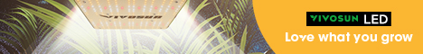 Free Shipping on your all orders over $59