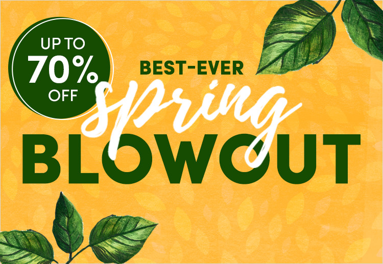 Wayfair.com: Up To 70% Off Spring Clearance Event