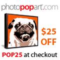 125x125 PhotoPopArt banner