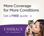 Embrace Pet Insurance-Get a Free Quote