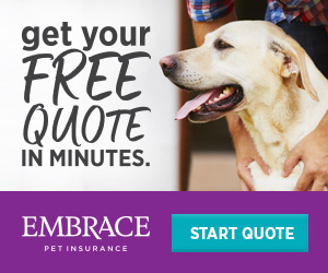 Get your free quote in minutes