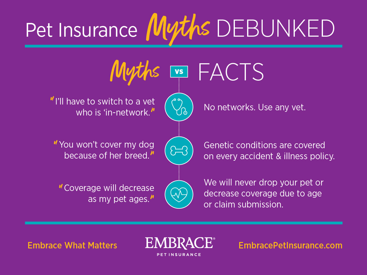 Pet Insurance Myths Debunked