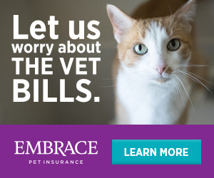 Get Your Free Quote - Embrace Pet Insurance
