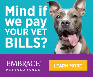 Mind if we pay your vet bills?