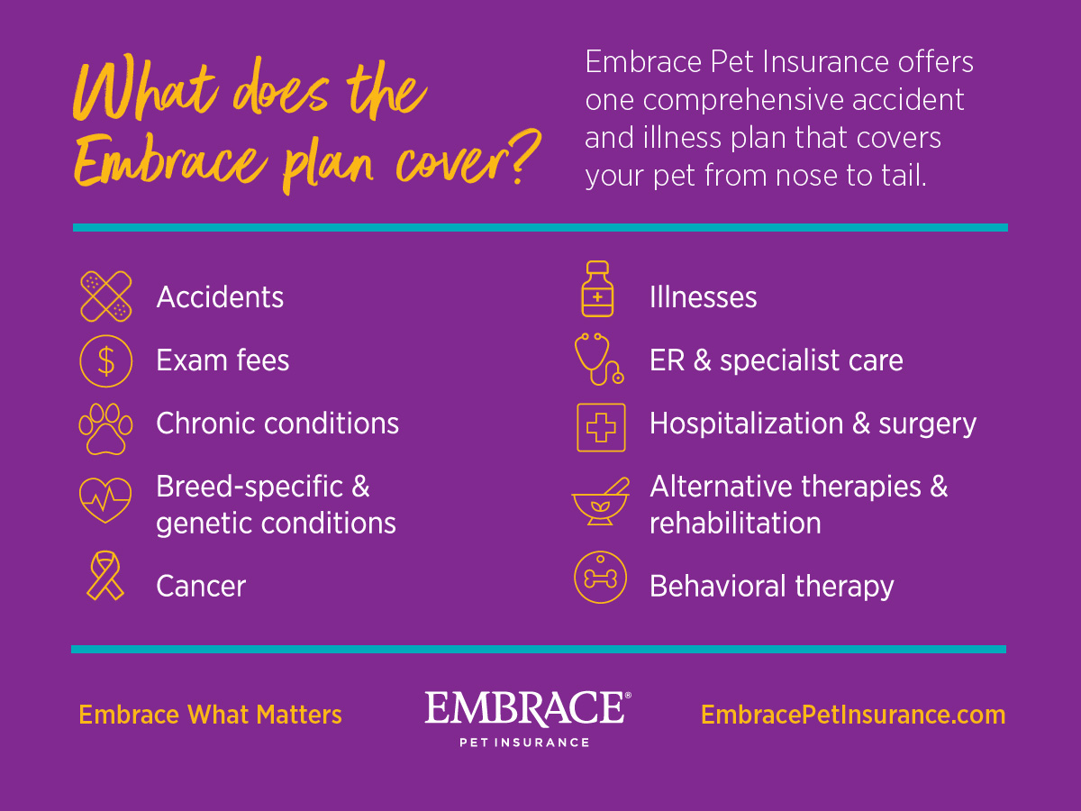 What does the Embrace plan cover