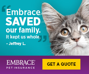 Embrace Saved Our Family