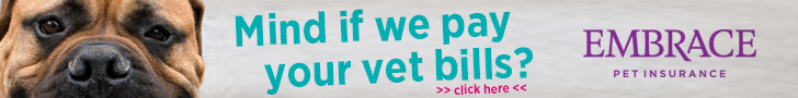 Who wouldn't mind one of the best dog insurance companies paying their vet bills?