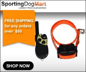 SportDOG, Sport Dog