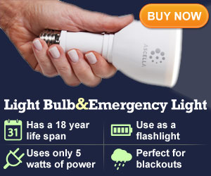 Emergency Light Bulb and Flash Light