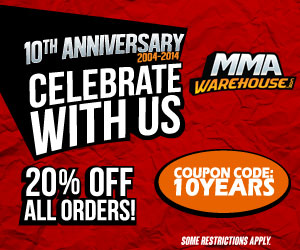 10th Anniversary Sale 300x250