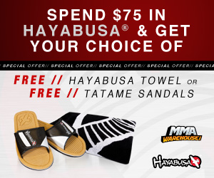 Hayabusa Offer 05.09.14 300x250