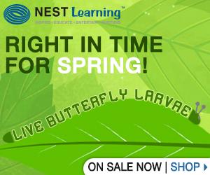 Watch caterpillars become butterflies from Nest Learning!