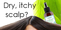 Need help for your dry itchy scalp?