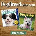 Shop DogBreedStore.com Now!