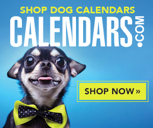 Shop Dog Calendars Now!