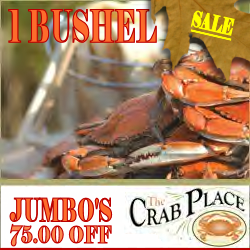 Fall Seafood Specials