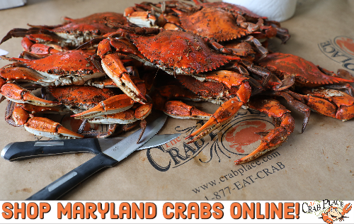Maryland Crabs For Sale Online