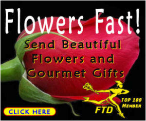 Flowers buy now