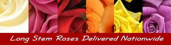 Long stem roses delivered nationwide
