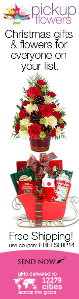 Free shipping for Christmas flowers