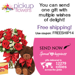 You Can Send One Gift With Multiple Wishes Of Delight!