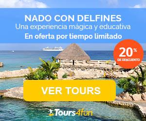 Nade con Delfines en México - Las mejores ofertas para una experiencia inolvidable. 20% de descuento por tiempo limitado!