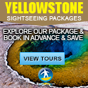 Yellowstone National Park Tours