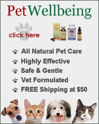 Prevention is the best medicine for your pet's health.