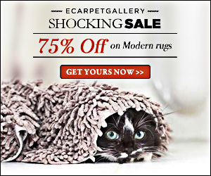 Save up to 75% on Modern Rugs!