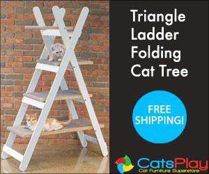 Triangle Ladder Folding Cat Tree