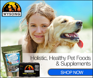 Hollistic, Healthy Pet Foods and Supplements, Shop Now