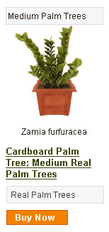 Cardboard Palm Tree - Medium