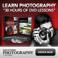 Learn & Master Photography
