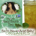 Earth Mama Angel Baby - Heartburn Tea