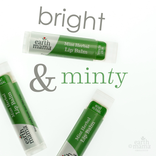 Earth Mama Organics - Mint Herbal Lip Balm