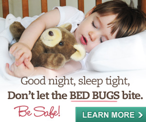 Don't let the Bed Bugs bite - click here