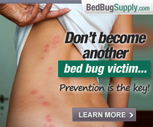 useful tools for fighting bed bugs