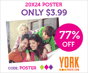20X24 Photo Poster – Just $3.99 – Save $13!
