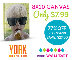 8X10 Canvas Print – Just $7.99 – Save $27!