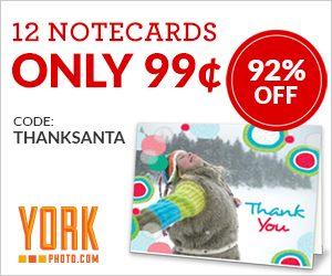 12 Notecards – Only 99¢ - Save $12!
