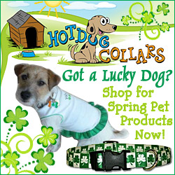 Get Great Sping Pet Products!