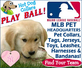 MLB Team Pet Accessories