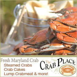 Fresh Maryland Crabs
