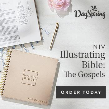 DaySpring Illustrating Bible The Gospels