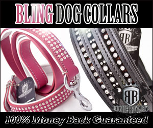 Rogue Royalty Bling for Dogs