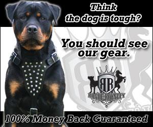 Rogue Royalty American Dog Collars